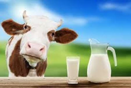 Picture for category UHD Milk